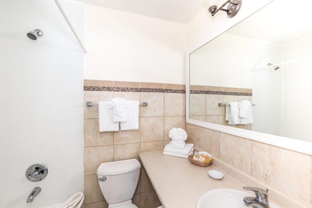 Silver Studio Bathroom